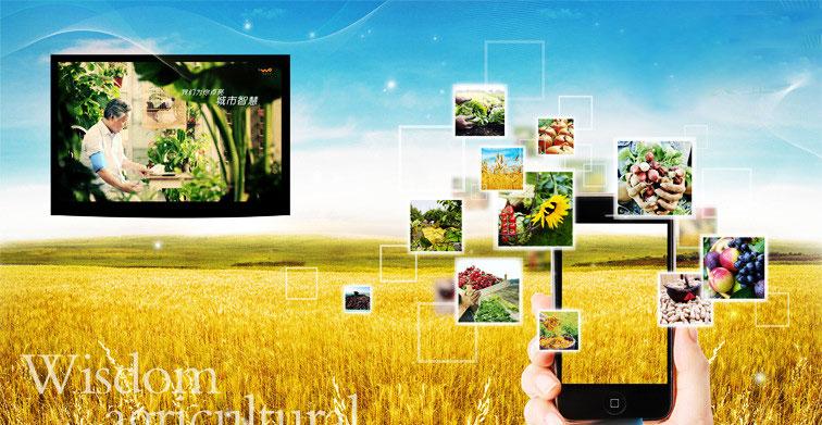 智能化管理,物联传感云与农业发展结合更有潜力